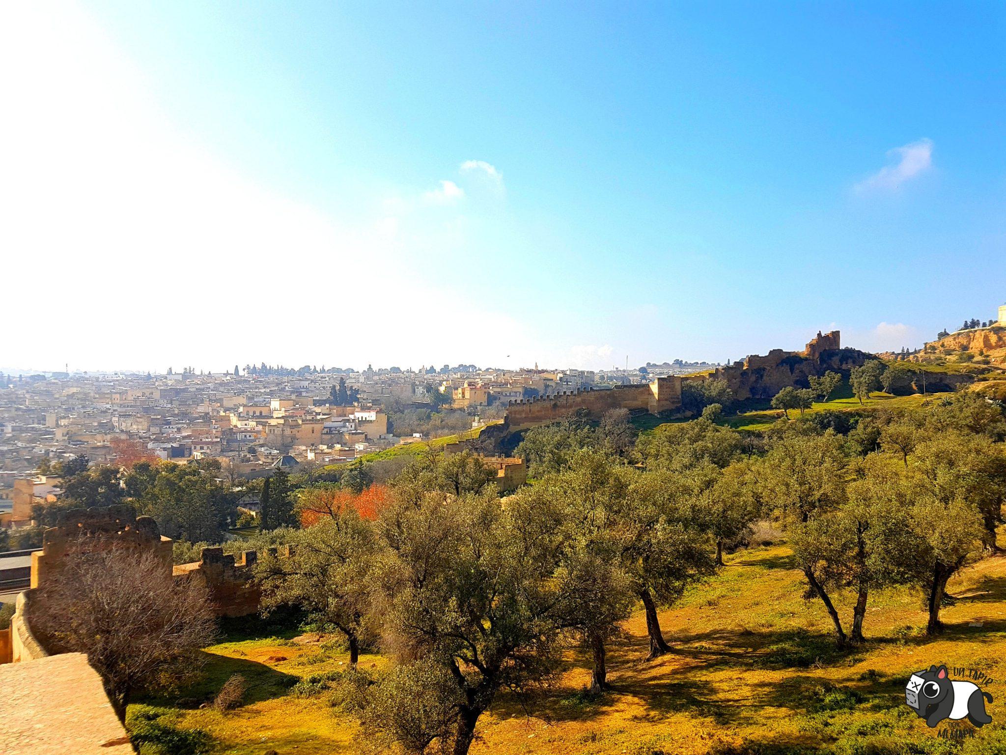 De camino a las Tumbas Meriníes. Vistas de Fez.