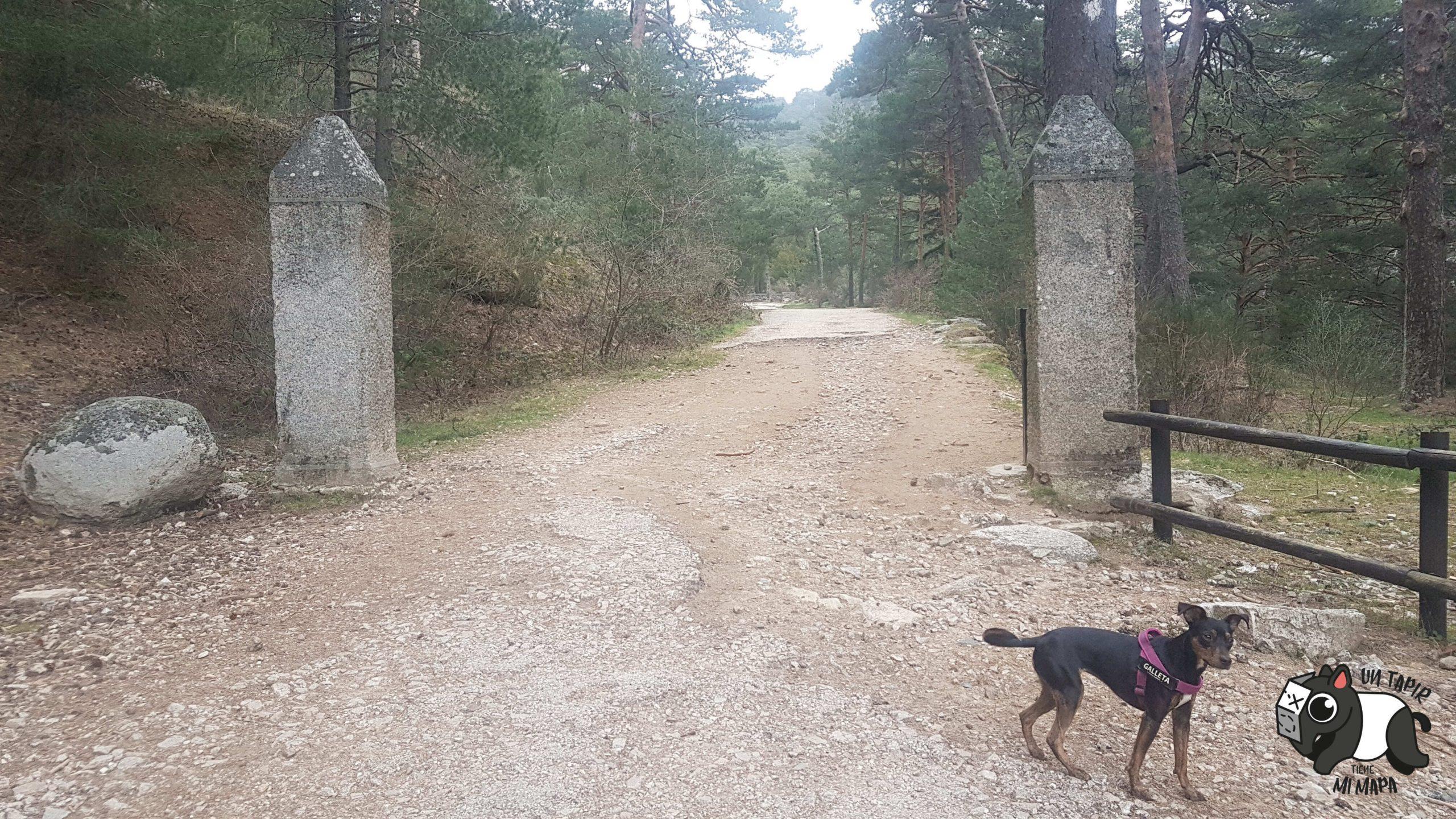 Parte de la ruta de los miradores, con mi perrita Galleta posando para la foto.