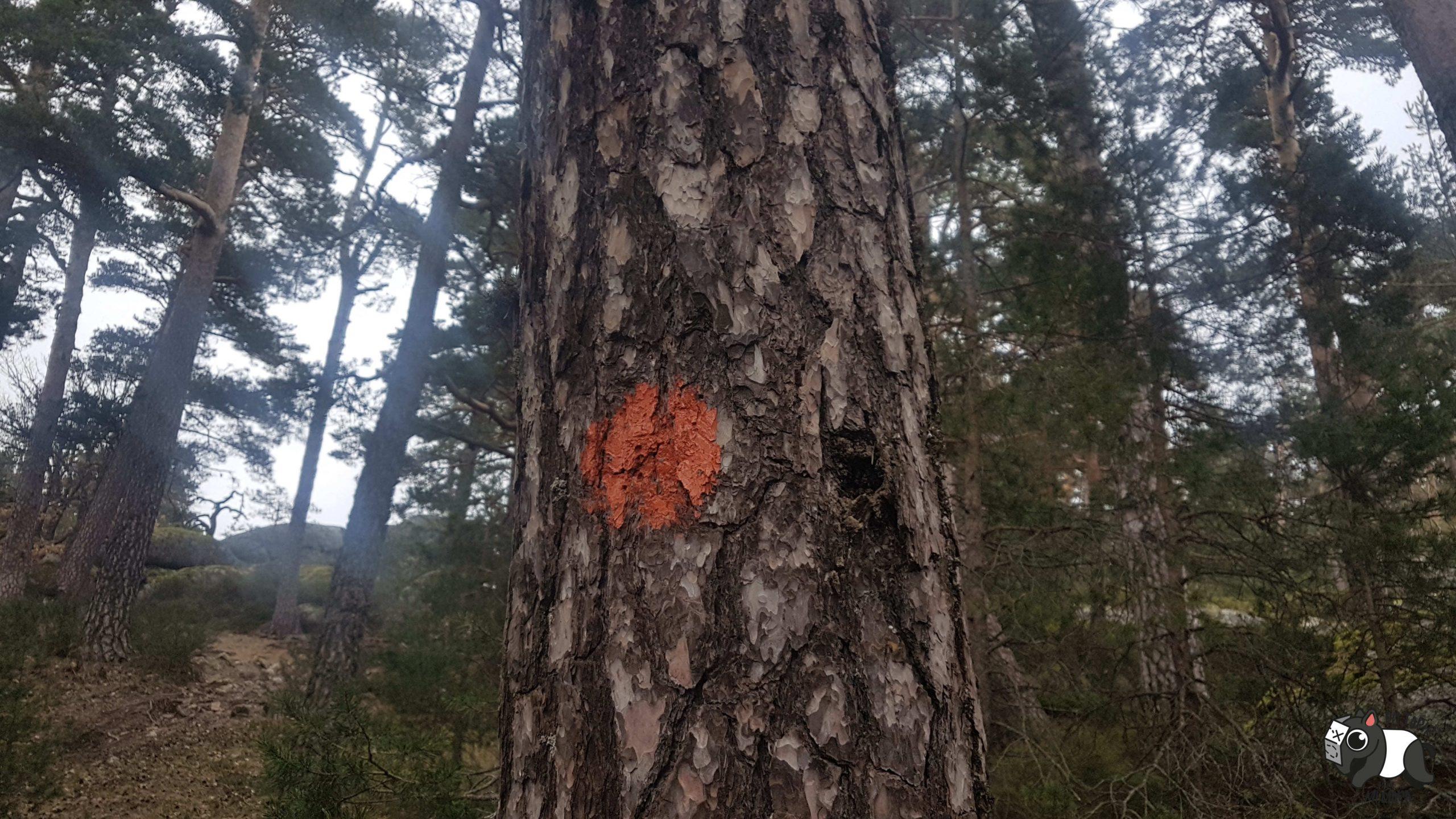 Imagen del punto naranja que hay que seguir al hacer la ruta de los miradores.