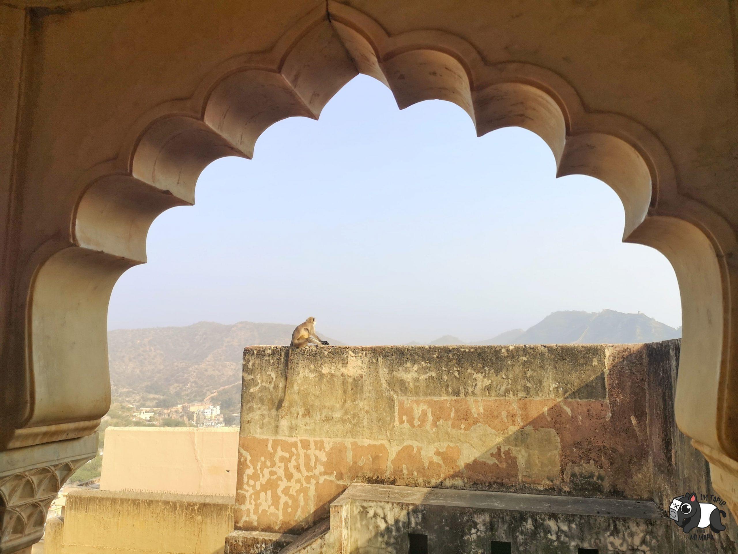 Imagen desde uno de los arcos del fuerte de Jaipur